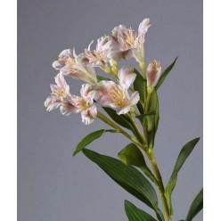 Альстромерия бело-розовая 72 см, 6 цв 2бут 12/72