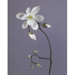 Магнолия белая ветвь в-75 см, цветок д-20 см, 2 бут 12/48