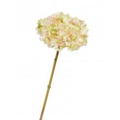 Гортензия нежно-розовая с нежно-лаймовым д-19 см, в-47 см 12/48