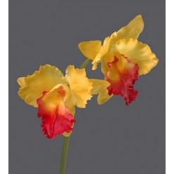 Орхидея Каттлея крупная желто-розовая 42 см 2цв 12/48