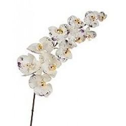 Орхидея Фаленопсис Super Real Touch цвет естественный белый с фиолет.крапинами в-100 см 11 цв 6/24