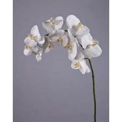 Орхидея Фаленопсис белая в-100 см, 11цв 4/24