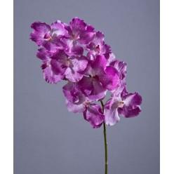 Орхидея Ванда с ярко-сиреневыми прожилками в-75 см, 10цв 8/32