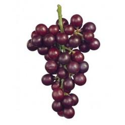 Виноград крупный круглый черный в-22 см 6/48