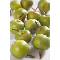 Яблочки-мини зеленые в коробке (10 шт.), д-4 см 6/96