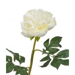 Пион махровый белый в-60 см 1цветок д-13 см 12/72