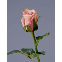 Роза Анабель крем-роз в-52 см, в-4,д-3 см 12/144