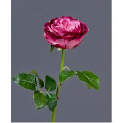 Роза Джема темная фуксия в-56 см бутон в-7,д-11 см 12/72
