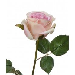 Роза Джулии нежно-розовая с кремовым в-53 см 1цв в-6,д-8 см 12/144