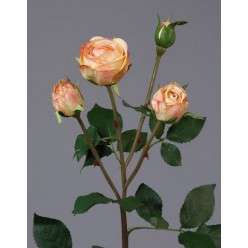 Роза Пале-Рояль ветвь персиково-золотистая в-47 см 3цв, 1бут12/60