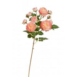 Роза Дэвид Остин ветка св.розовая с кремовым (3 цв, 8 бут) в-51 см 12/96