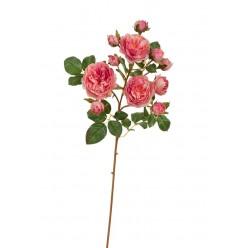Роза Дэвид Остин ветка пастельно-розово-малиновая (3 цв, 8 бут) в-51 см 12/96