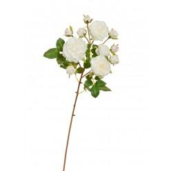 Роза Дэвид Остин ветка белая с розовой окаемкой на бутончиках (3 цв, 8 бут) в-51 см 12/96