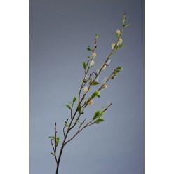 Ветвь Серебрянной Вербы с почками в-120 см 12/36