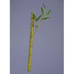 Бамбук стебель длинный св.зеленый с веточкой в-39 см д-2 см 24/288