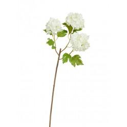Калина Бульдонеж (Вибурнум) белая ветка 3 соцветия в-55 см 12/96