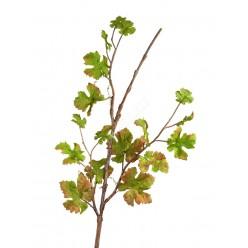 (s) Виноградная ветвь интерьерная