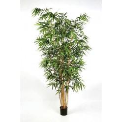 Бамбук Новый Биг Лиф 300 см 2/2 IRTR-10.34510N