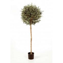 Олива натуральная шар 140 см 2/2