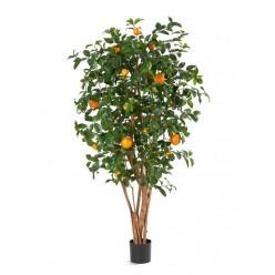 Апельсиновое дерево с плодами в-180 см 2/2