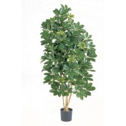 Шеффлера натуральная зеленая 170 см 2/2
