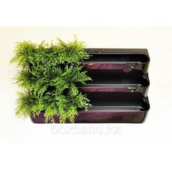 Фитомодули для растений