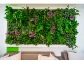Озеленение Green Clinic