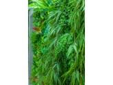 Стена из искусственных растений 03004