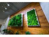 Озеленение тур агентства
