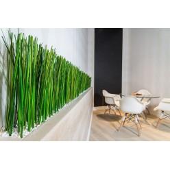 Озеленение офисных помещений национальной компании