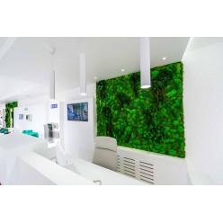 Озеленение компании