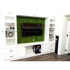 Создание зеленых стен в интерьере из стабилизированного мха