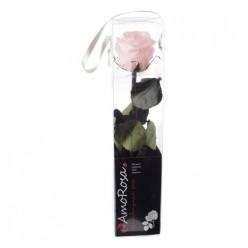 Амороза Мини в упак. 25 розовый