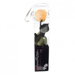 Амороза Мини в упак. 25 персиковый