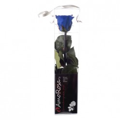 Амороза Мини в упак. 25 синий