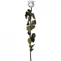 Амороза Премиум навал12 белый