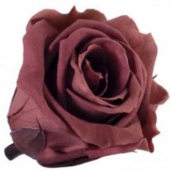 Роза Медеа 8гол. коричневый