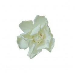 Гардения Цветок белый