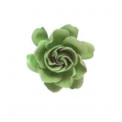 Гардения Цветок светло-зеленый минт