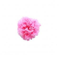 Гвоздики светло розовый
