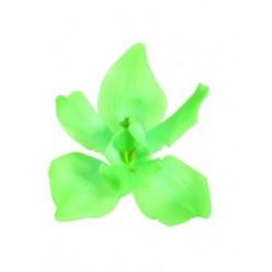 Орхидея Цимбидиум 4 гол. зеленый