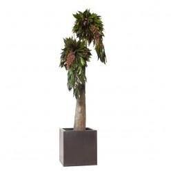 Дерево Джумбо Империо 190см зеленый