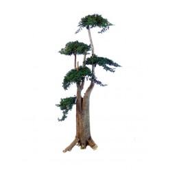 Дерево Джумбо Фукука 160см зеленый