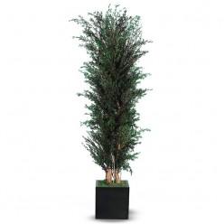 Лепто дерево ветвистое / 180 зеленый