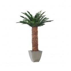 Сика Пальма зеленый 150 см