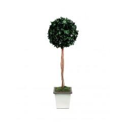 Плющ дерево ствол.шар. 45см