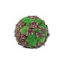 NATURAL BURDEOS HORTENSIA MOSSES MEDIUM SPHERE зеленый