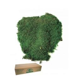 Мох плоск. навал. зеленый 2,5 кг.