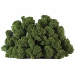 Мох ягель зеленый коробка 4 кг